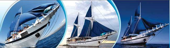 Siren-fleet-banner