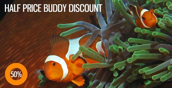 2Fish_buddy-discount