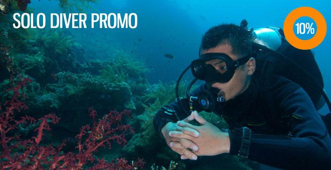2Fish_solo-diver-promo