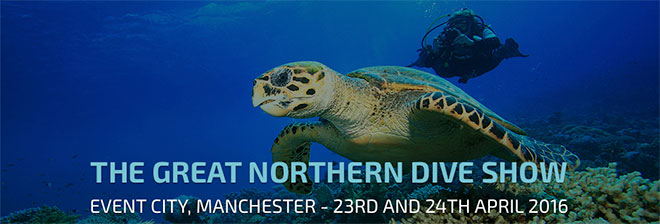 great-northern-Dive-Show